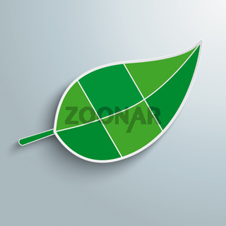 Big Green Leave Infographic 6 Options PiAd