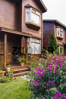 Door of wooden house and flower in garden