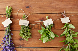 greens, spices or medicinal herbs on wood