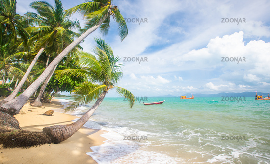 Stormy sea and beach with coconut palm trees. Koh Samui