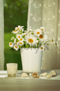 Summer daisies in front of window