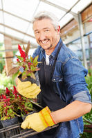 Verkäufer im Gartencenter bietet Blume an