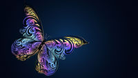 Beautiful glowing multicolored butterfly