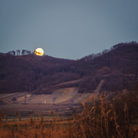 Full moon set over vineyards in Burgenland at the Leithagebirge