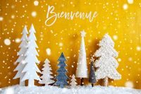 Christmas Trees, Snowflakes, Yellow Background, Bienvenue Means Welcome