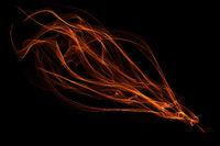 abstract ribbon flame