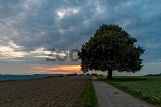 Wonderful autumn hike near Sipplingen and Uberlingen on Lake Constance