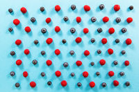 Fresh raspberries and blueberries alternately arranged on blue background