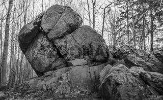 Der Felsen im Wald