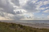 Nordseeinsel Texel