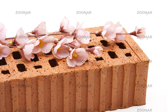 Flowering branch with brick stone