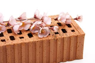 Blütenzweig mit Ziegelstein