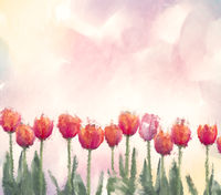 Watercolor digital painting of tulip flowers.