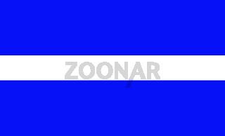 thin white line flag
