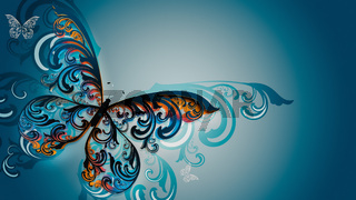 Beautiful multicolored butterfly