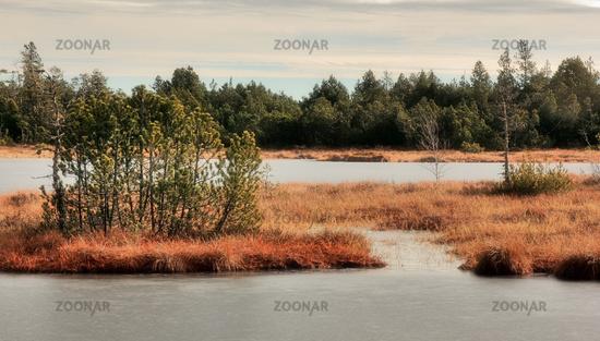Wildsee and Wildsee Bog