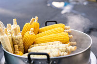 Fresh hot corn on the cob steaming from the cart of a street food vendor - Freshly cooked corn cobs stacked and for sale at a local hawker market - Delicacy, cuisine and travel foodie concept
