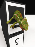 chameleon and slow computer 3d illustration