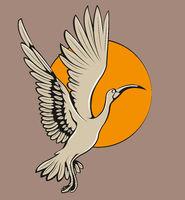 rising ibis bird
