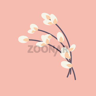 Willow twig Easter willow.Flat vector illustration. Design for Easter, packaging