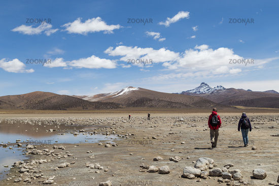 Tourists in Sajama National Park, Bolivia