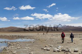 Tourists in Sajama National Park, Bolivia