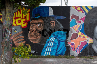 Affe Graffiti im Mauerpark in Berlin