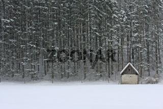 Einsame Huette vor winterlichem Hochwald
