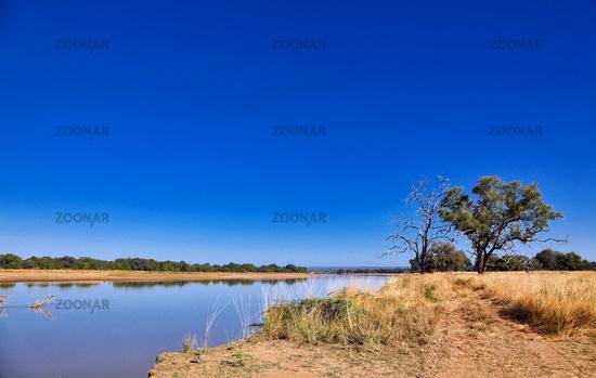 landscape at the Luangwa River, Zambia