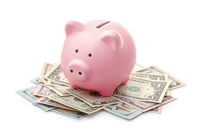 Pink piggy bank and US dollars notes