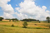Landscape French hills