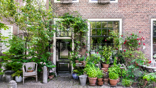 Dutch city house with plants and pottery