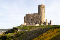 View at Landshut castle in Bernkastel-Kues on the river Moselle in autumn with multi colored vineyards