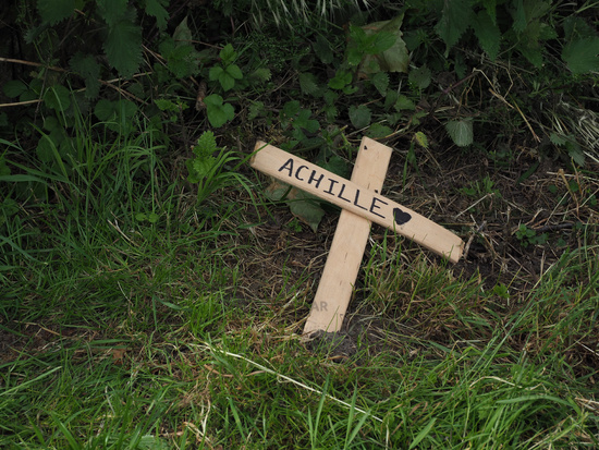 wooden cross on the side of the path
