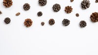 Autumn dry pine cones on white background. flat lay, top view, copy space