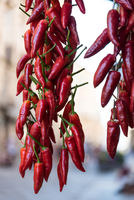 bright red hot chili - spicy hot taste