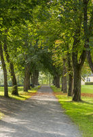 Avenue, Buckeye, Berleburg Castle
