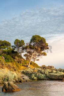Küstenlandschaft am Cap Dramont bei Saint-Raphael