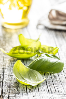 Green basil leaves on white wooden table.