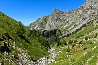 Taleinschnitt mit Gebirgsbach im den Waadtländer  Voralpen, Bex, Waadt, Schweiz
