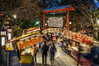 Image of the opening of the Kyoto Yasaka Shrine