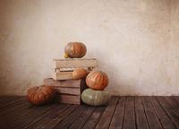 Fresh pumpkins on wooden floor
