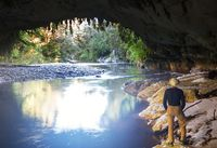 New Zealand cave