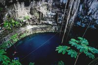 Persons swimmig in Oxman cenote with blue water and tropical plants in the cave, Yucatan, Mexico