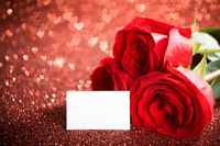 Red roses and blank card