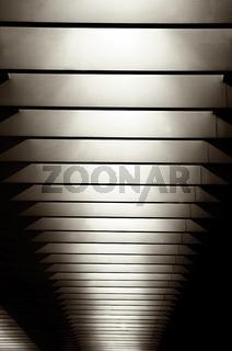 straight lines (01).jpg