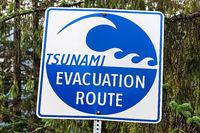 A blue tsunami evacuation route direction sign