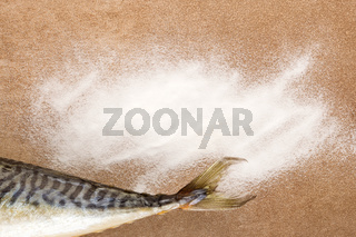 White Collagen powder and fresh fish tail with copy space from above.