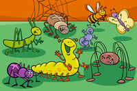cute insects and bugs cartoon characters group
