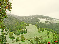 September morning in Umes, South Tyrol